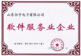 软件服务企业证书