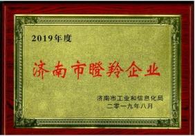 2019年度济南市瞪羚企业
